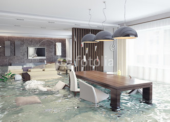 Will Your Homeowners Insurance Cover Mold Damage?