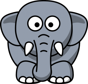 elephant in the room - insurance policy rate increase